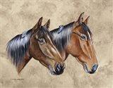 Sanders Horses Feathers