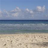 Beach IV