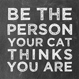 Person Cat