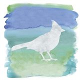 Watercolor Bird 3