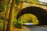 Tunnel of Fall
