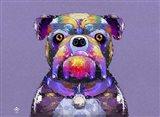 Bulldog I
