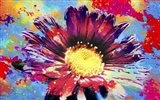 Flower XIII