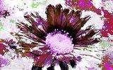 Flower XIV