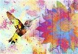 Hummingbird XVIII