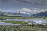 Lamar Valley (YNP)