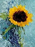 Submerged Sunflower 4