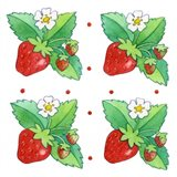 Strawberries Four