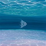 Blue Angels Blue Sea