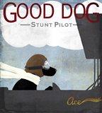 Good Dog Stunt Pilot