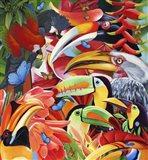 Jungle Colours