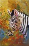 Zebra Days