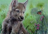 Wolfcub 1