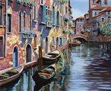Venezia in Rosa
