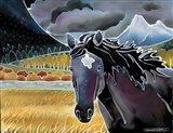 Black Horse At Night