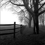 Corner Fence
