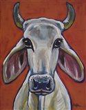 Cow Pablo
