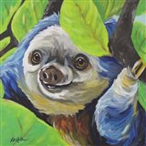 Sloth Speedy
