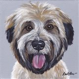 Wheaton Terrier 2