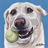 Yellow Lab Ball 2