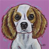 Cavalier King Charles Spaniel 'Love Bug'