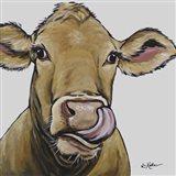 Cow Daisy