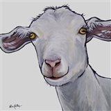 Goat Hilda