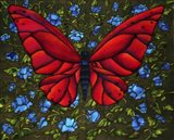 Red On Blue Butterfly