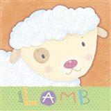 Baby Animals 4