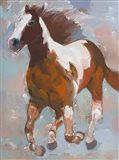 Painted Horse #2