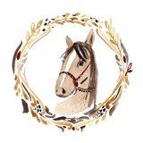 Farm 7 - Horse