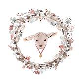 Farm 8 - Lamb