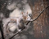 Snow Day Squirrel
