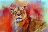 Colorful Expressions Lioness
