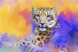 Colorful Expressions Snow Leopard