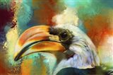 Colorful Expressions Toucan