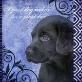 Blue Pup Pattern