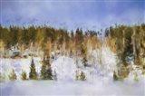 Colorado Color Splash 2