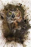Great Horned Owl In The Cemetery