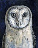 Barn Owl I