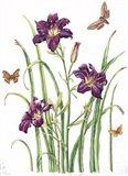 August Bouquet 1