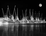 Shrimp Boats Asleep