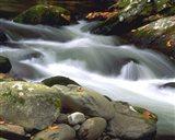 Little River Elkmont #1