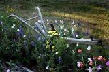 Flower Plow