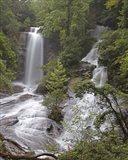 Twin Falls, SC