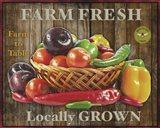 Farm Fresh IV