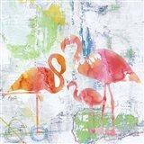 Troical Flamingos