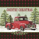 Country Christmas 1