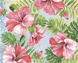Hibiscus Paradise I