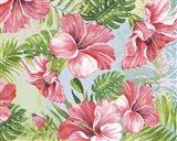 Hibiscus Paradise II